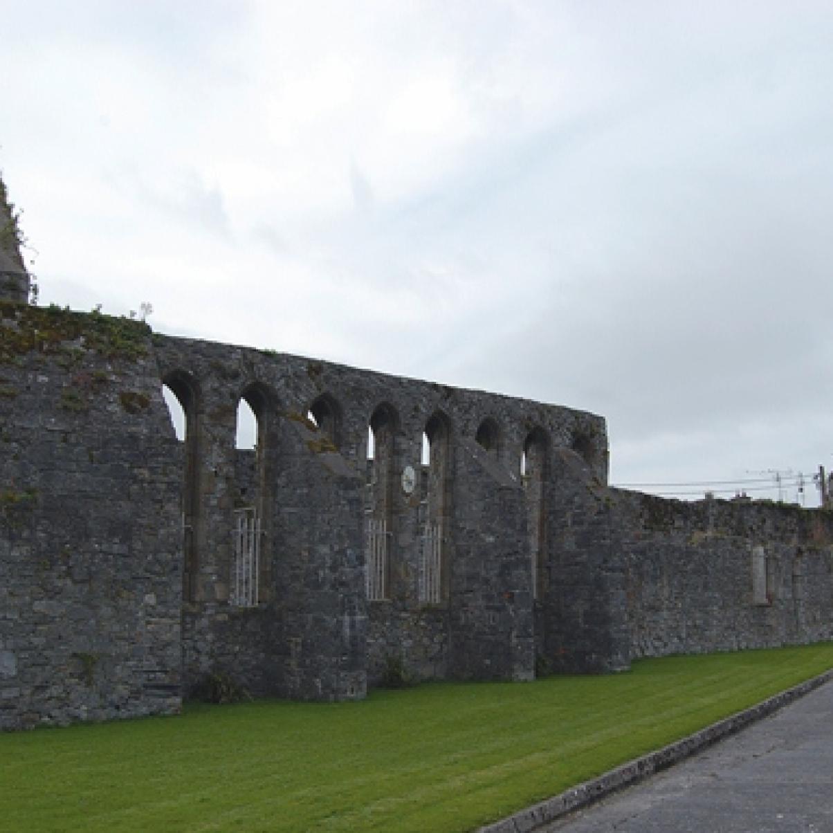 Abbey Ruins Nenagh